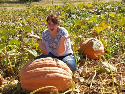 The Gilcrease Orchard Pumpkin